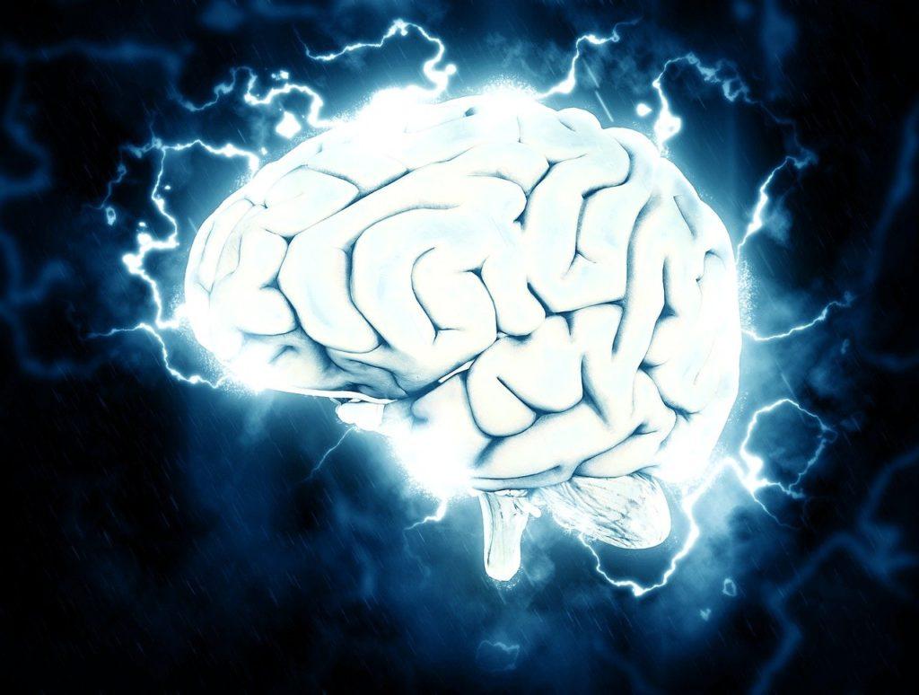 brain, electrical, knowledge